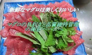 magurohinsituraberu.jpg